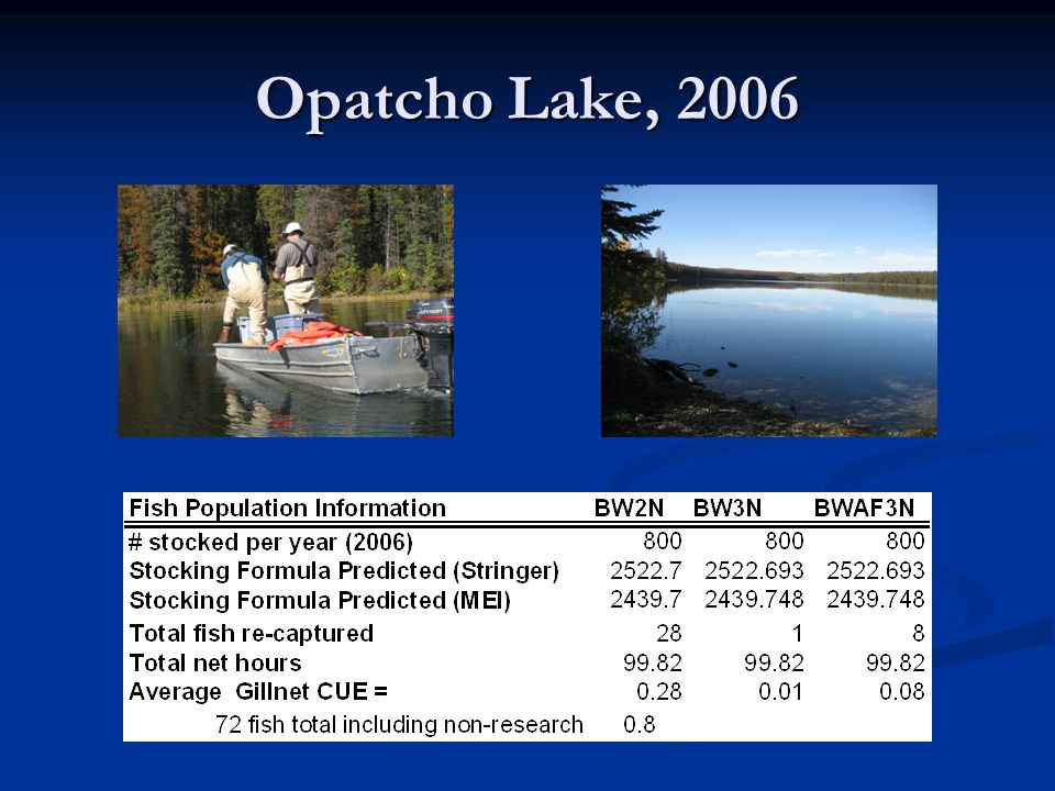 Opatcho Lake, 2006