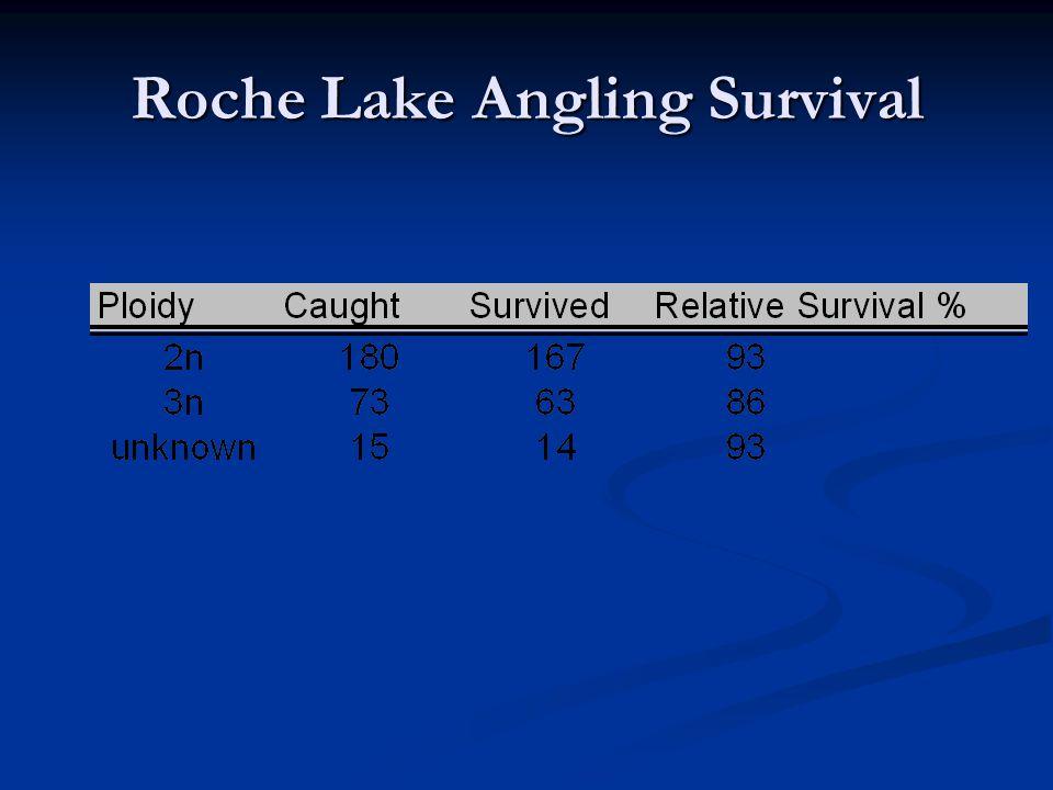 Roche Lake Angling Survival