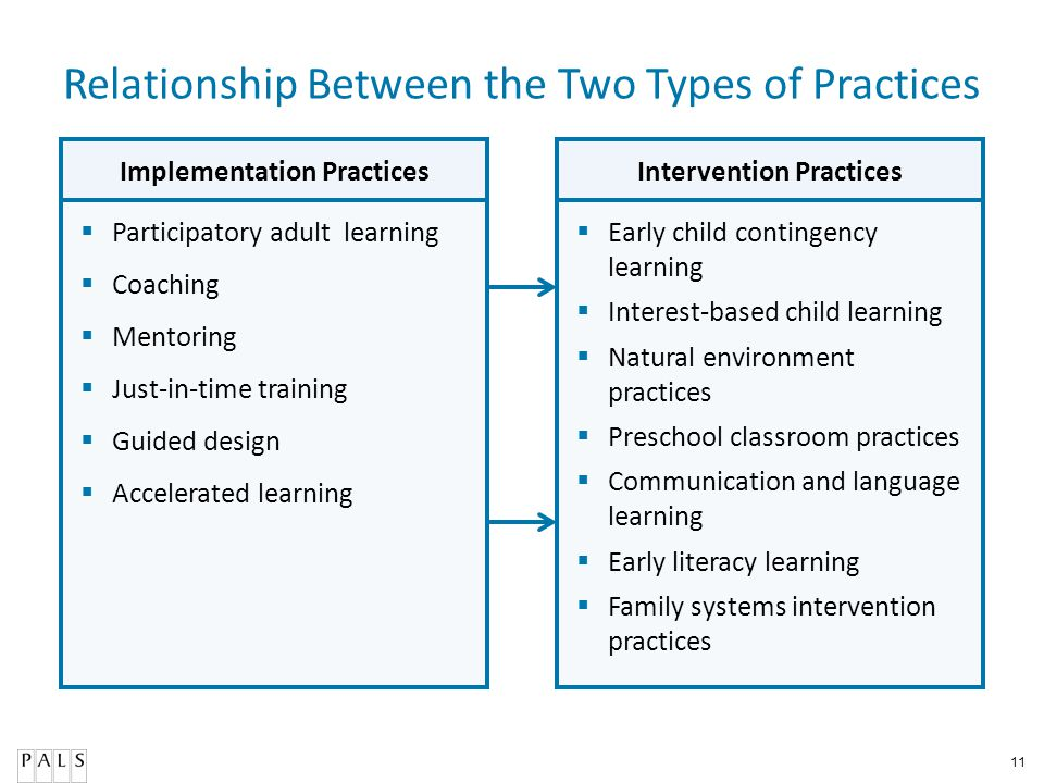 Implementation Practices Intervention Practices