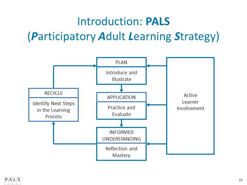 Introduction: PALS (Participatory Adult Learning Strategy)