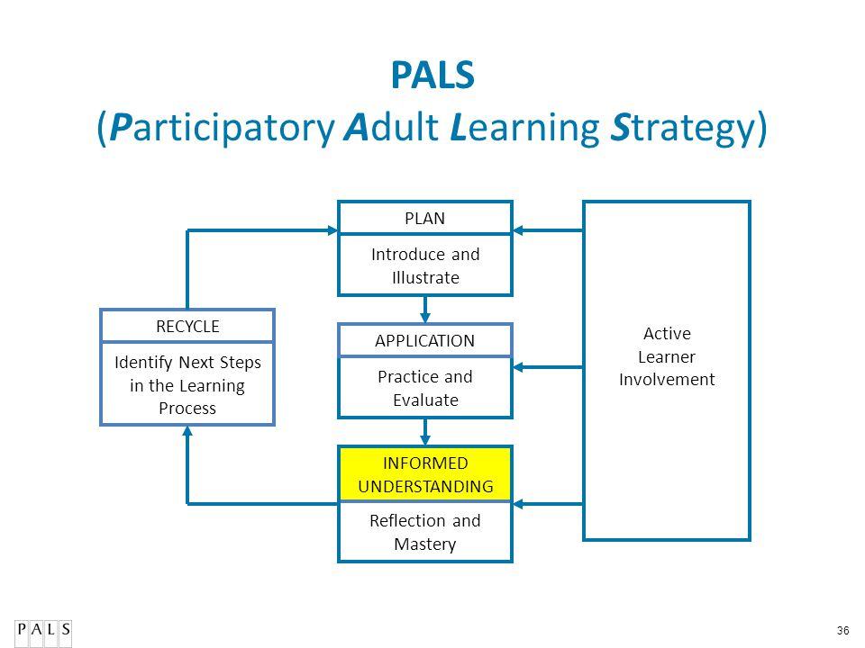 PALS (Participatory Adult Learning Strategy)
