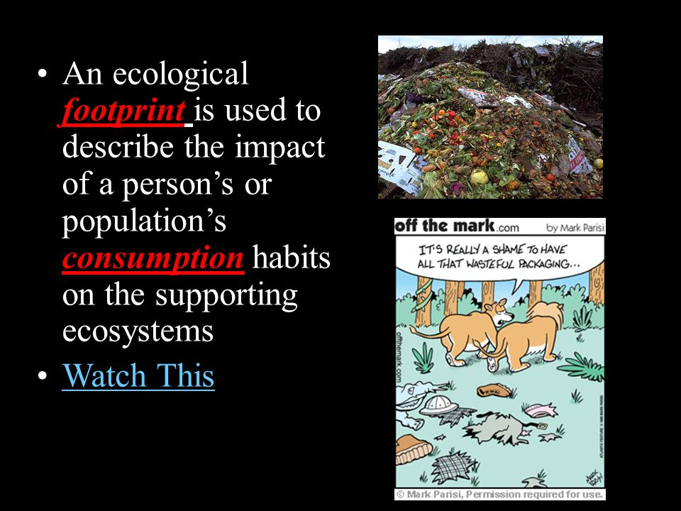 An ecological footprint is used to describe the impact of a person's or population's consumption habits on the supporting ecosystems
