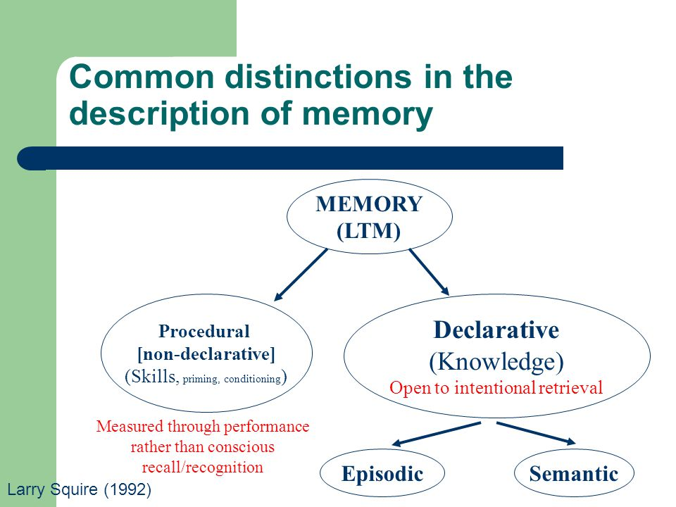 Common distinctions in the description of memory