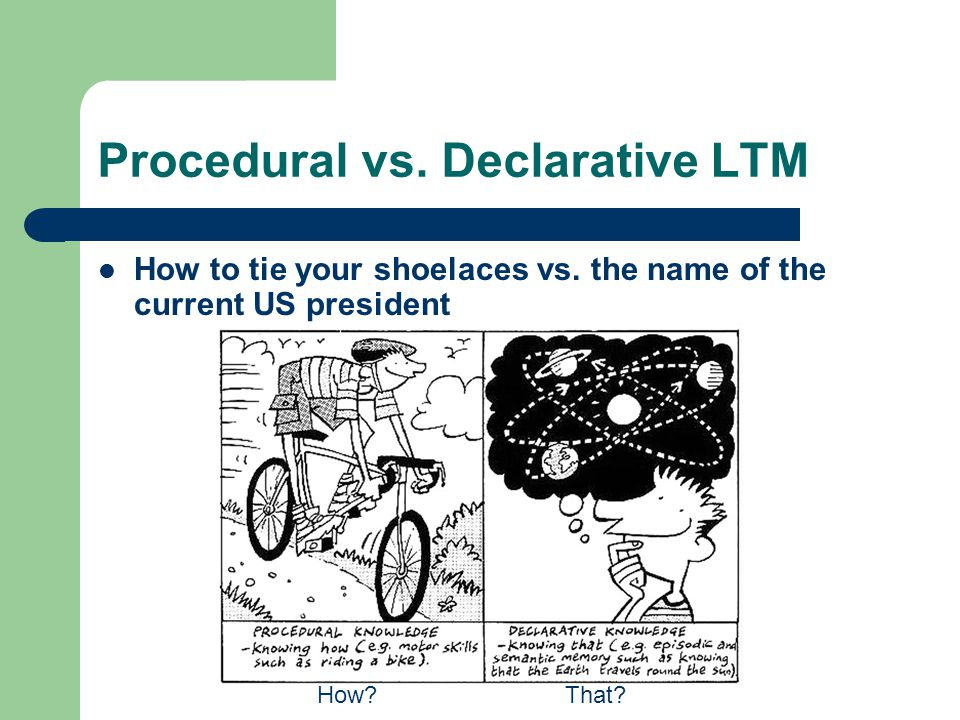 Procedural vs. Declarative LTM