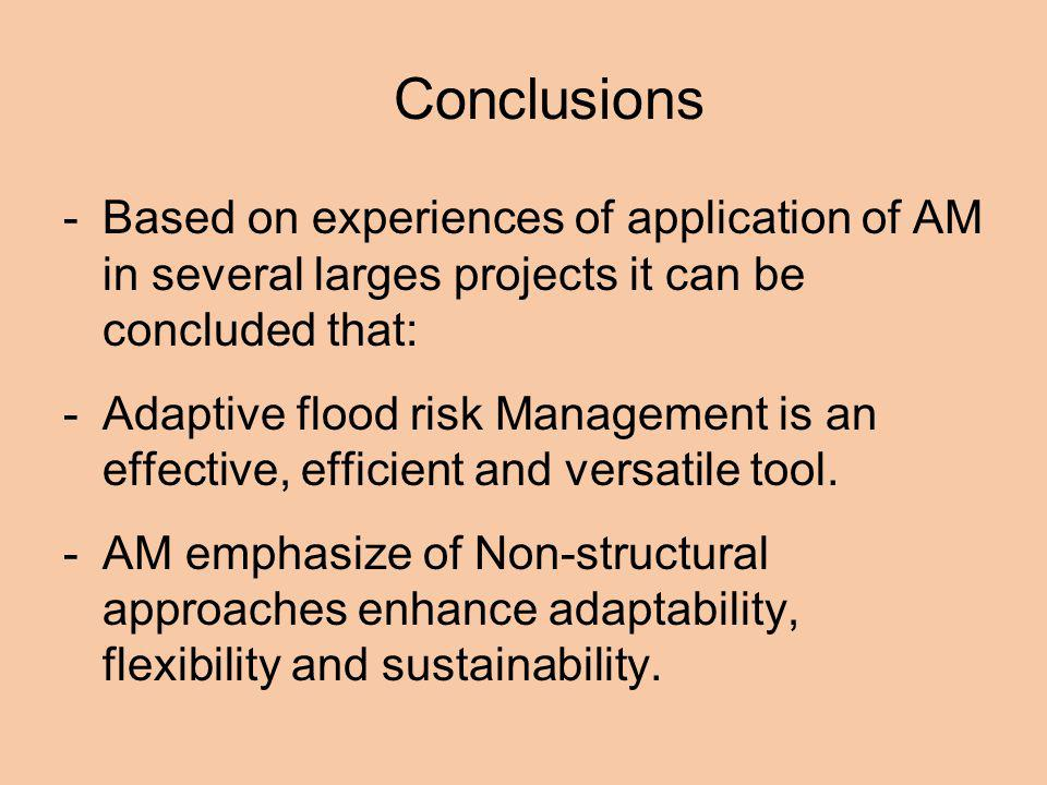 Conclusions Based on experiences of application of AM in several larges projects it can be concluded that: