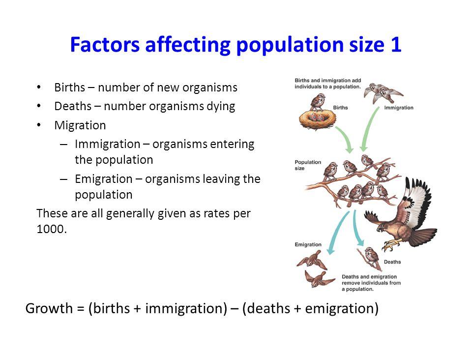 Factors affecting population size 1