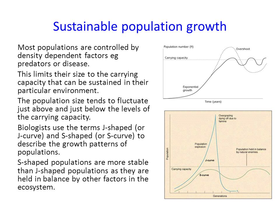 Sustainable population growth