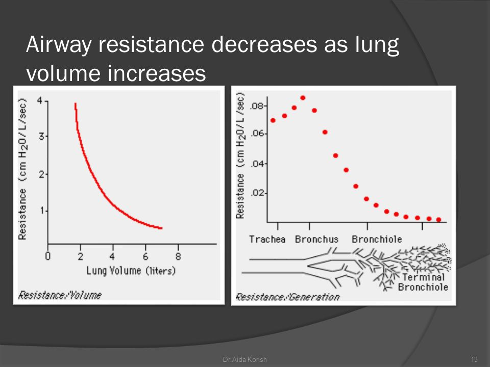 Airway resistance decreases as lung volume increases
