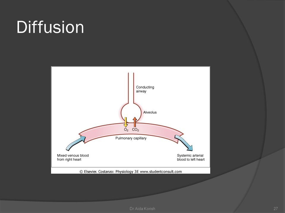 Diffusion Dr.Aida Korish