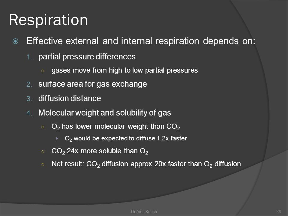 Respiration Effective external and internal respiration depends on: