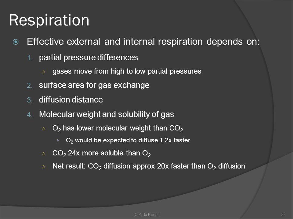 Respiration Effective external and internal respiration depends on: