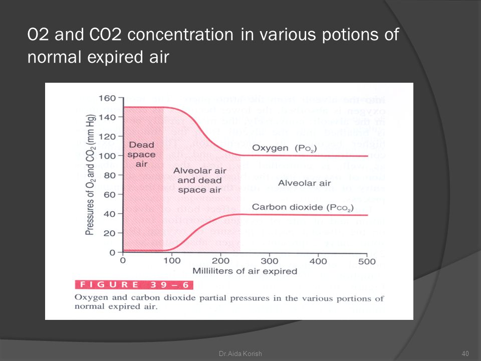 O2 and CO2 concentration in various potions of normal expired air