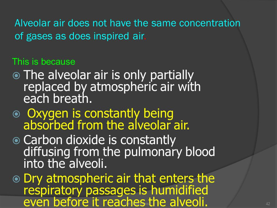 Oxygen is constantly being absorbed from the alveolar air.