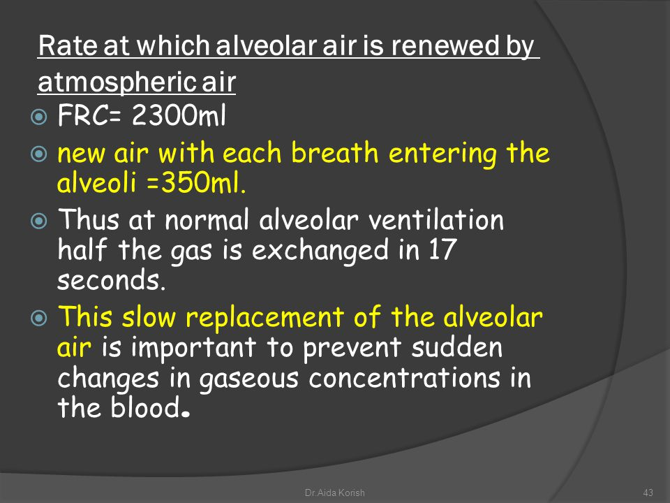 Rate at which alveolar air is renewed by atmospheric air