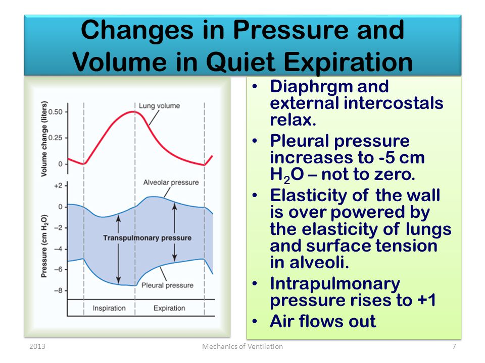 Changes in Pressure and Volume in Quiet Expiration