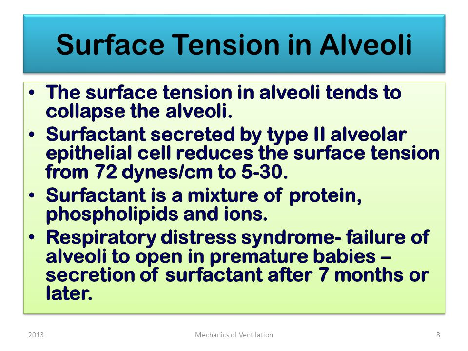 Surface Tension in Alveoli