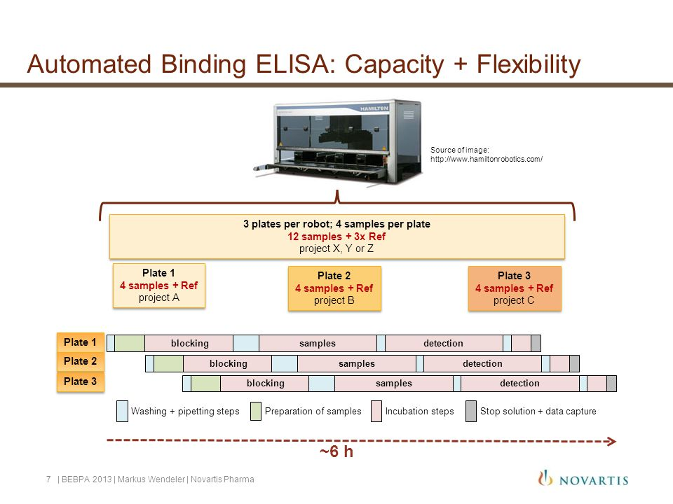 Automated Binding ELISA: Capacity + Flexibility