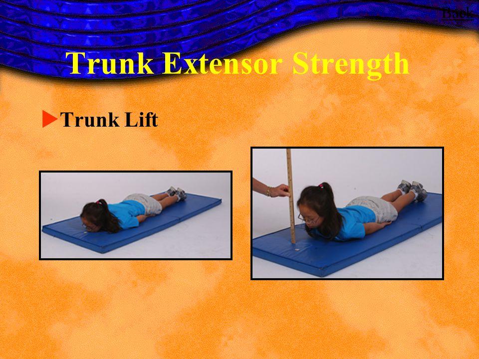 Trunk Extensor Strength