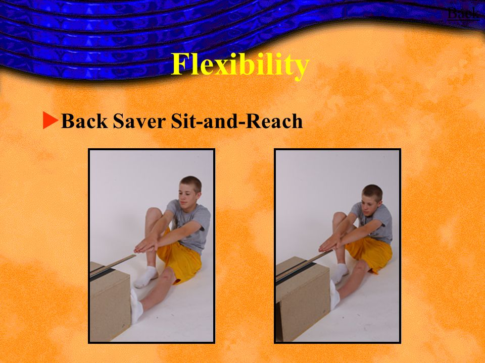 Back Flexibility Back Saver Sit-and-Reach