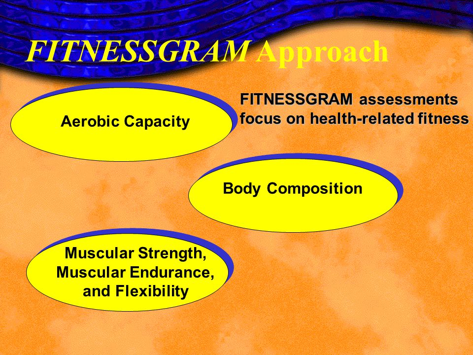 Muscular Strength, Muscular Endurance, and Flexibility