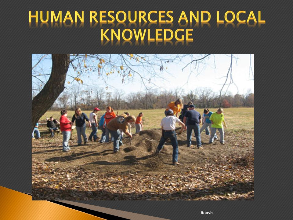 Human resources and local knowledge