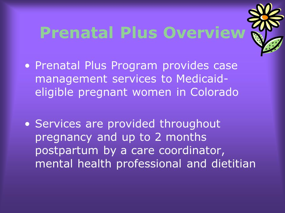 Prenatal Plus Overview