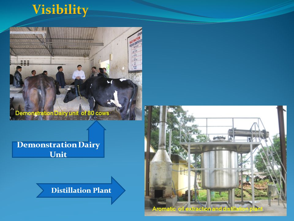 Demonstration Dairy Unit
