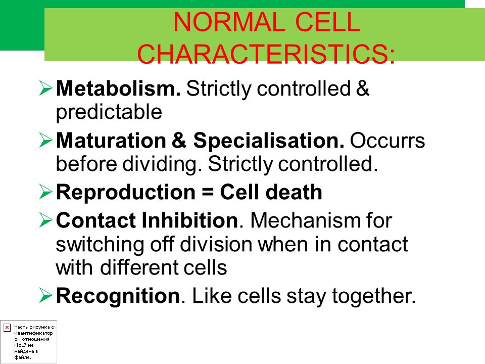 NORMAL CELL CHARACTERISTICS: