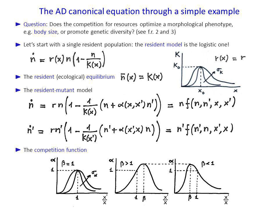 The AD canonical equation through a simple example