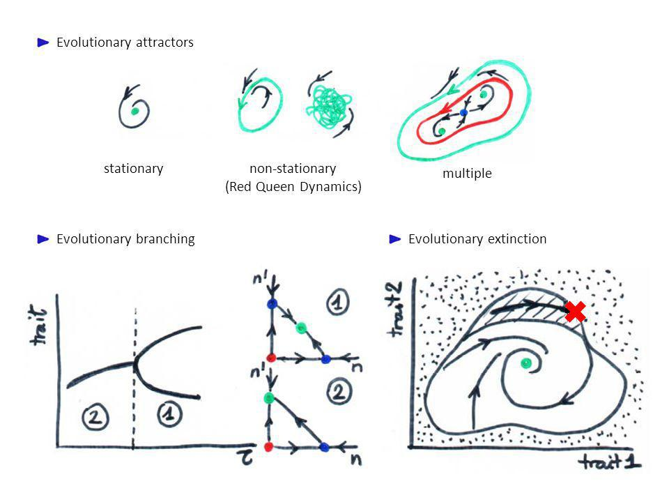 Evolutionary attractors