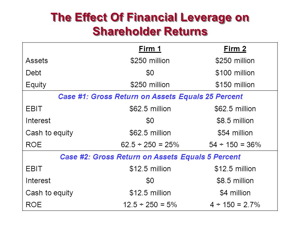 The Effect Of Financial Leverage on Shareholder Returns