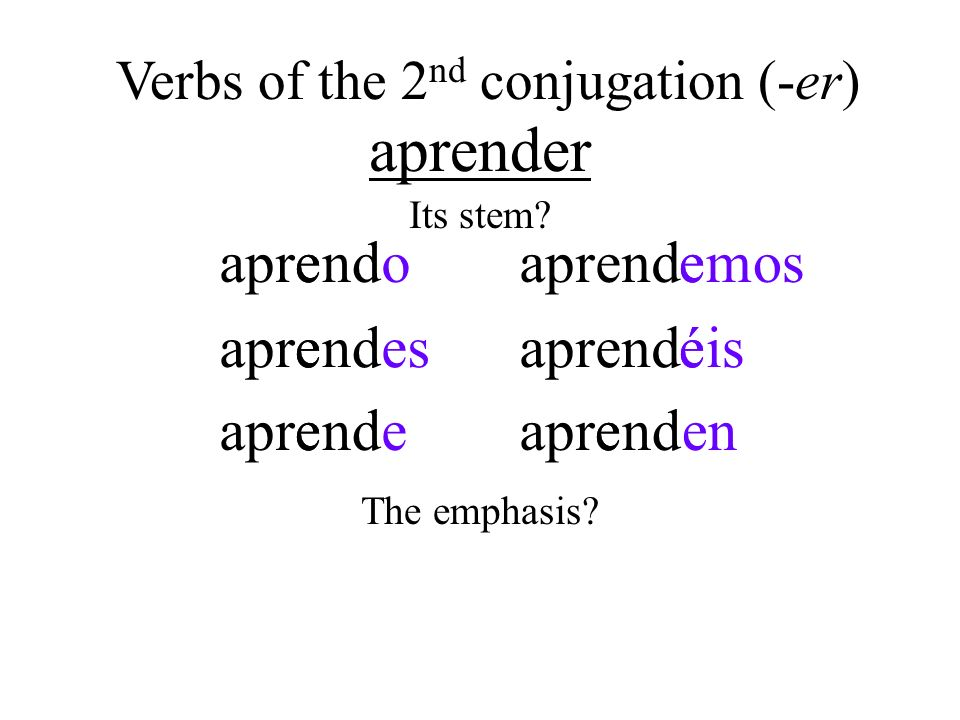 Verbs of the 2nd conjugation (-er)