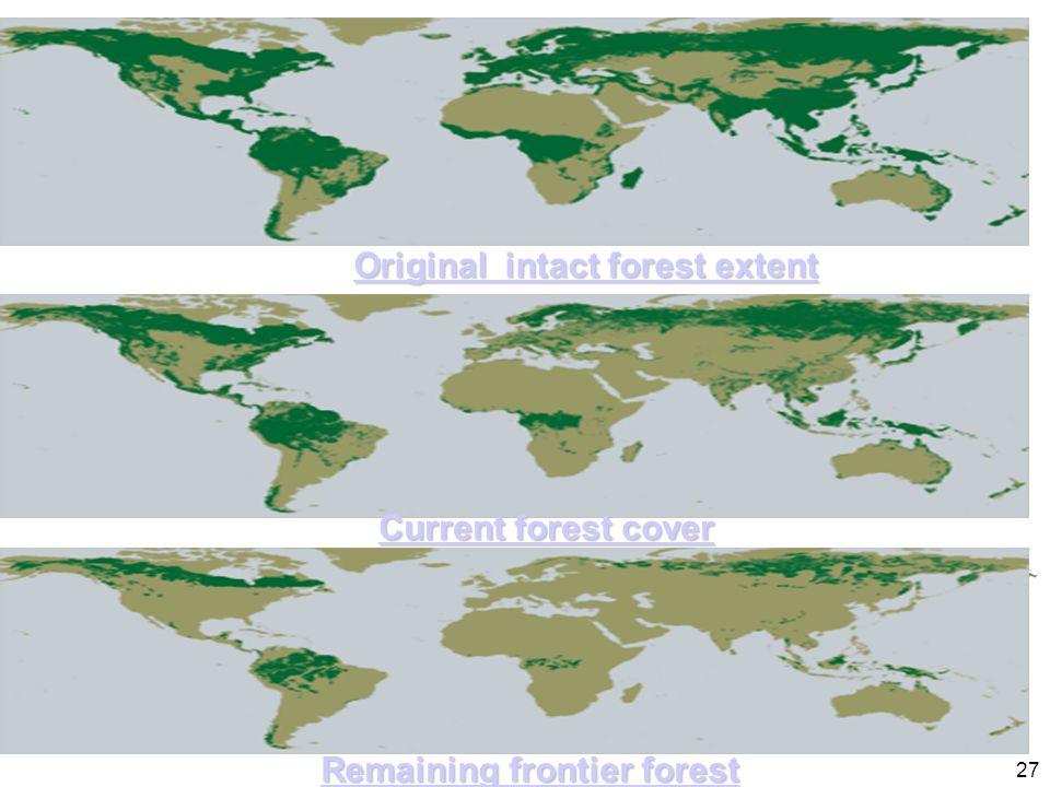 Original intact forest extent