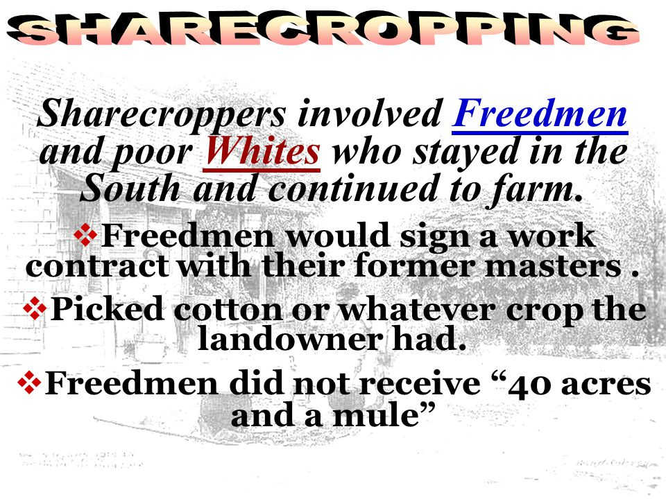 SHARECROPPING Sharecroppers involved Freedmen and poor Whites who stayed in the South and continued to farm.