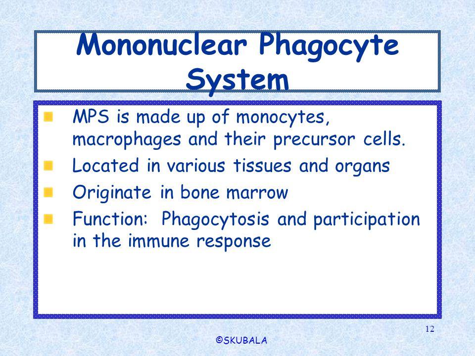 Mononuclear Phagocyte System