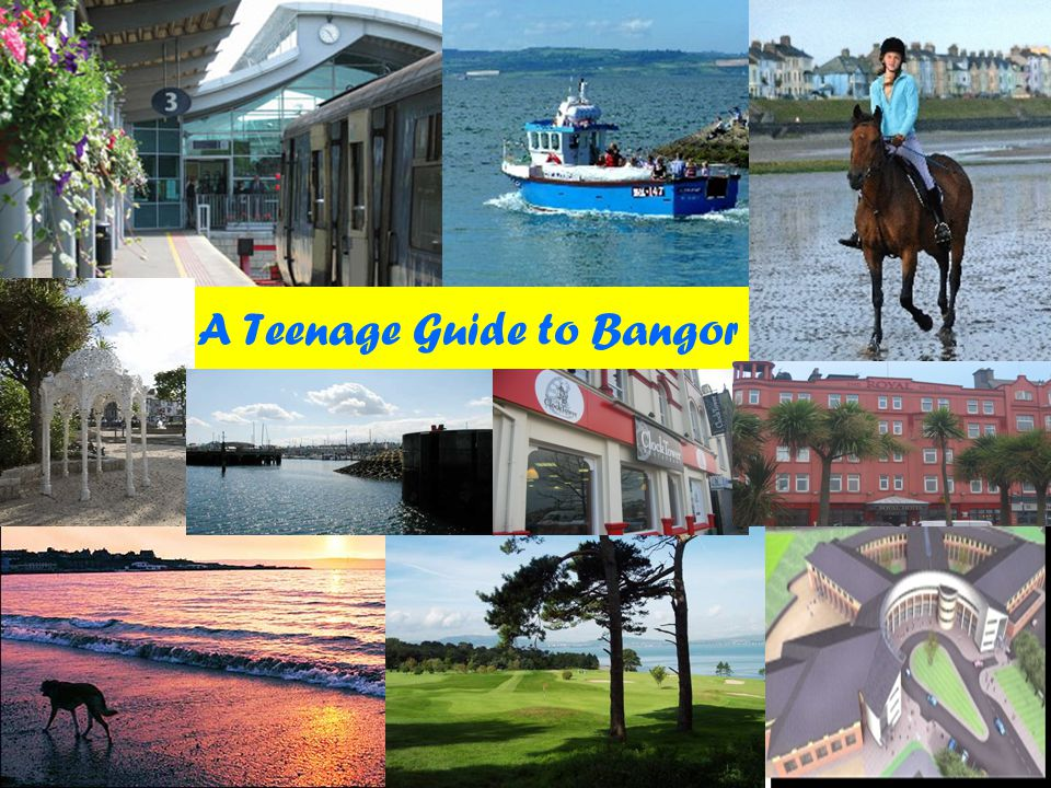 A Teenage Guide to Bangor