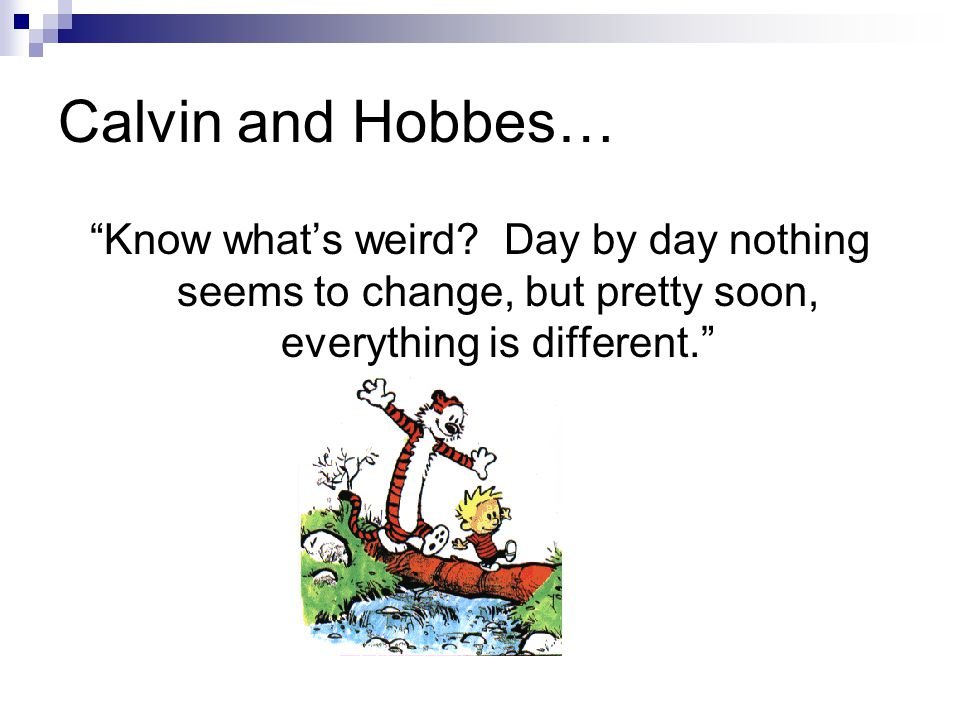 Calvin and Hobbes… Know what's weird.