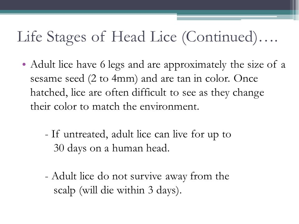 Life Stages of Head Lice (Continued)….