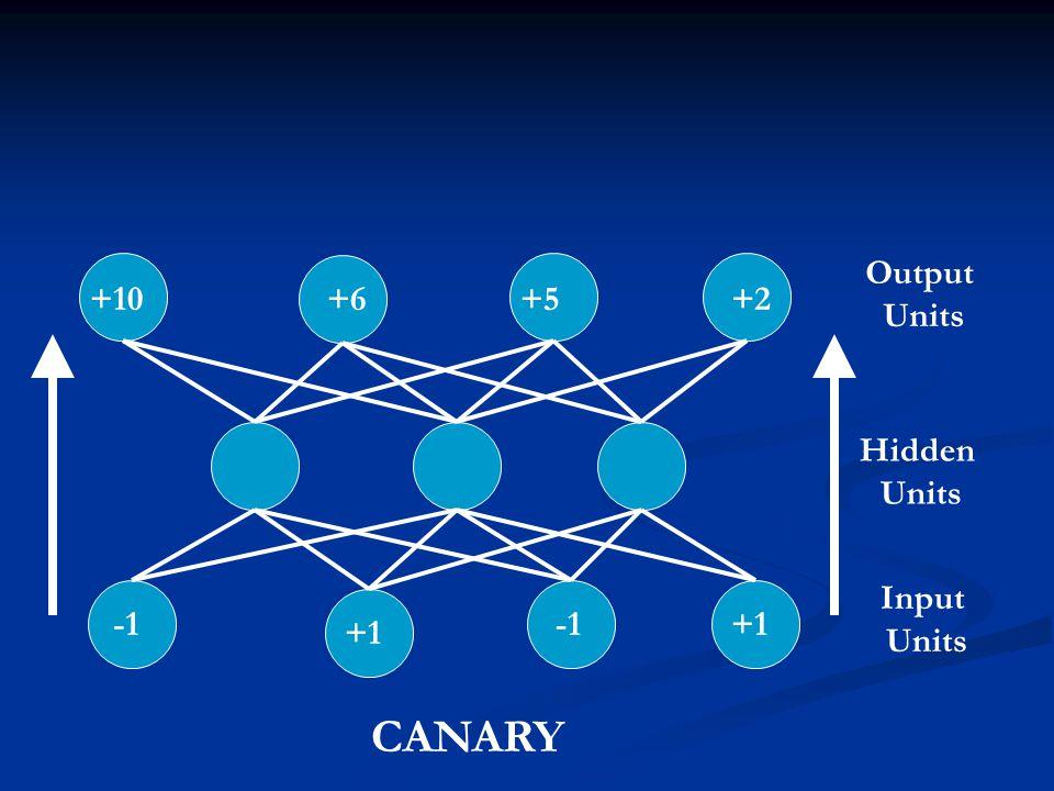 Output Units +10 +6 +5 +2 Hidden Units Input Units -1 -1 +1 +1 CANARY