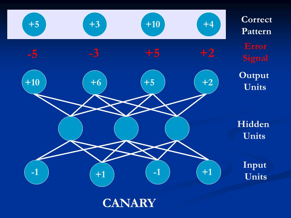 -5 -3 +5 +2 CANARY +5 +3 +10 +4 Correct Pattern Error Signal Output