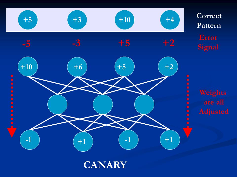 -5 -3 +5 +2 CANARY +5 +3 +10 +4 Correct Pattern Error Signal +10 +6 +5