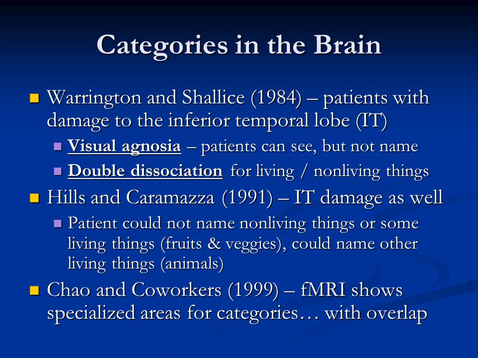 Categories in the Brain