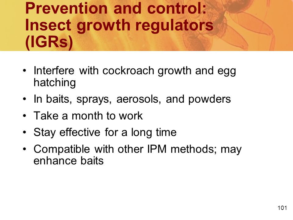 Prevention and control: Insect growth regulators (IGRs)