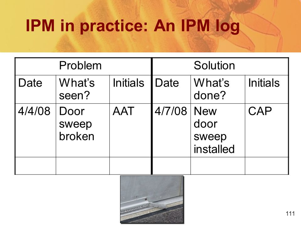IPM in practice: An IPM log