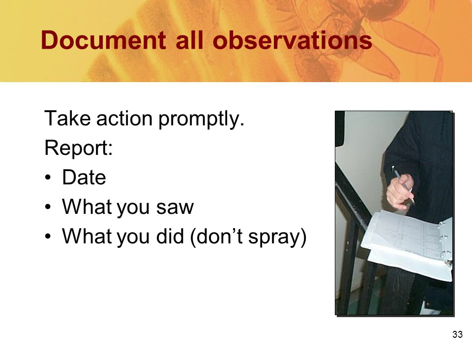 Document all observations