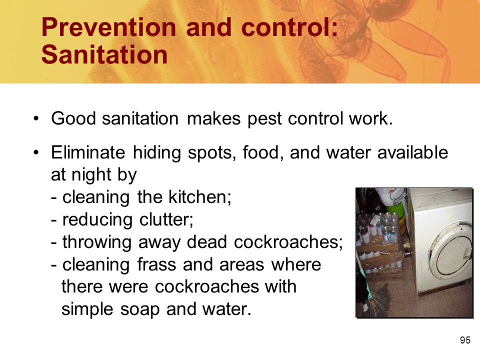 Prevention and control: Sanitation