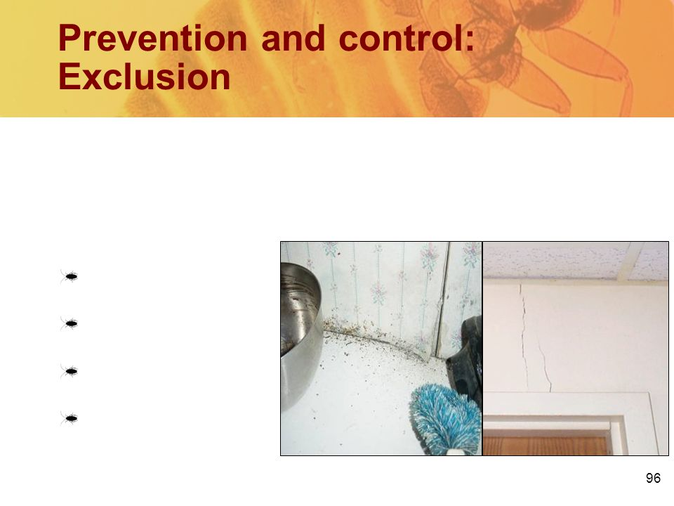 Prevention and control: Exclusion