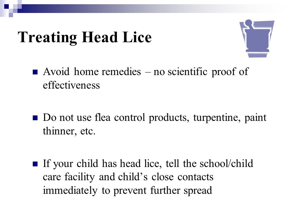 Treating Head Lice Avoid home remedies – no scientific proof of effectiveness. Do not use flea control products, turpentine, paint thinner, etc.
