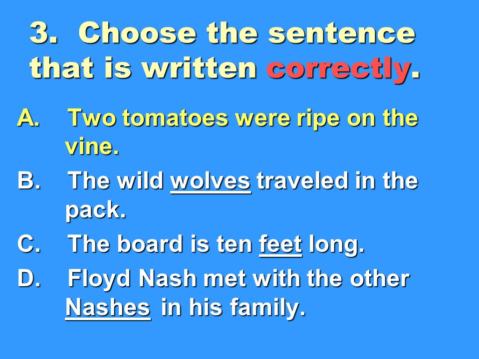 3. Choose the sentence that is written correctly.