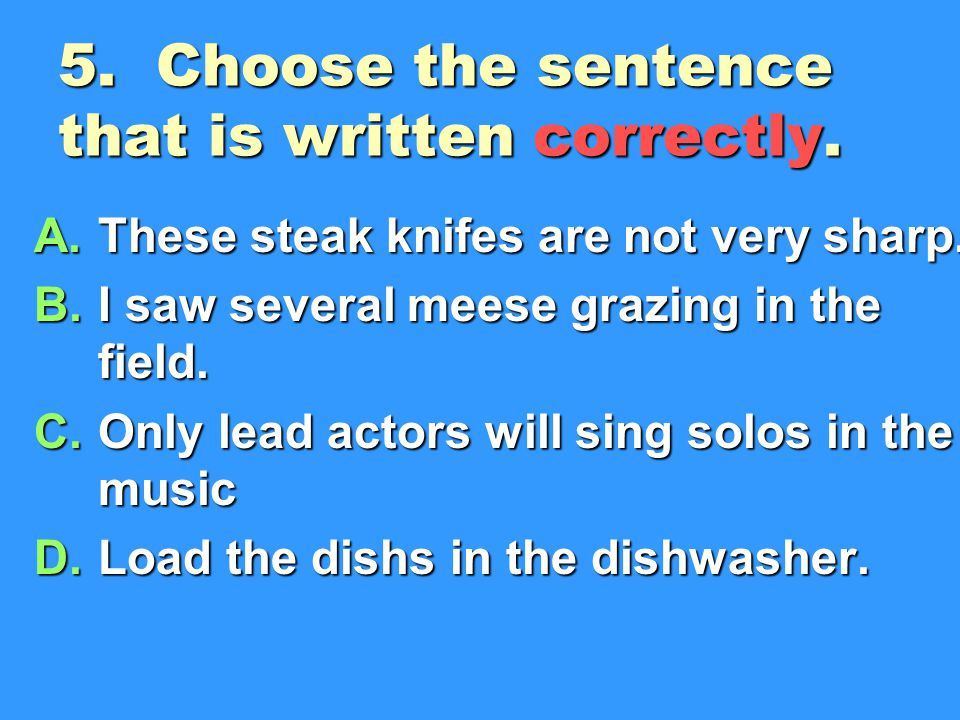 5. Choose the sentence that is written correctly.